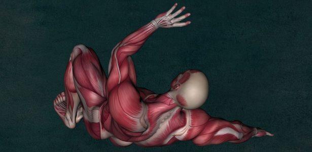 L'hyper-tonicité musculaire et la kinésiologie de l'axe